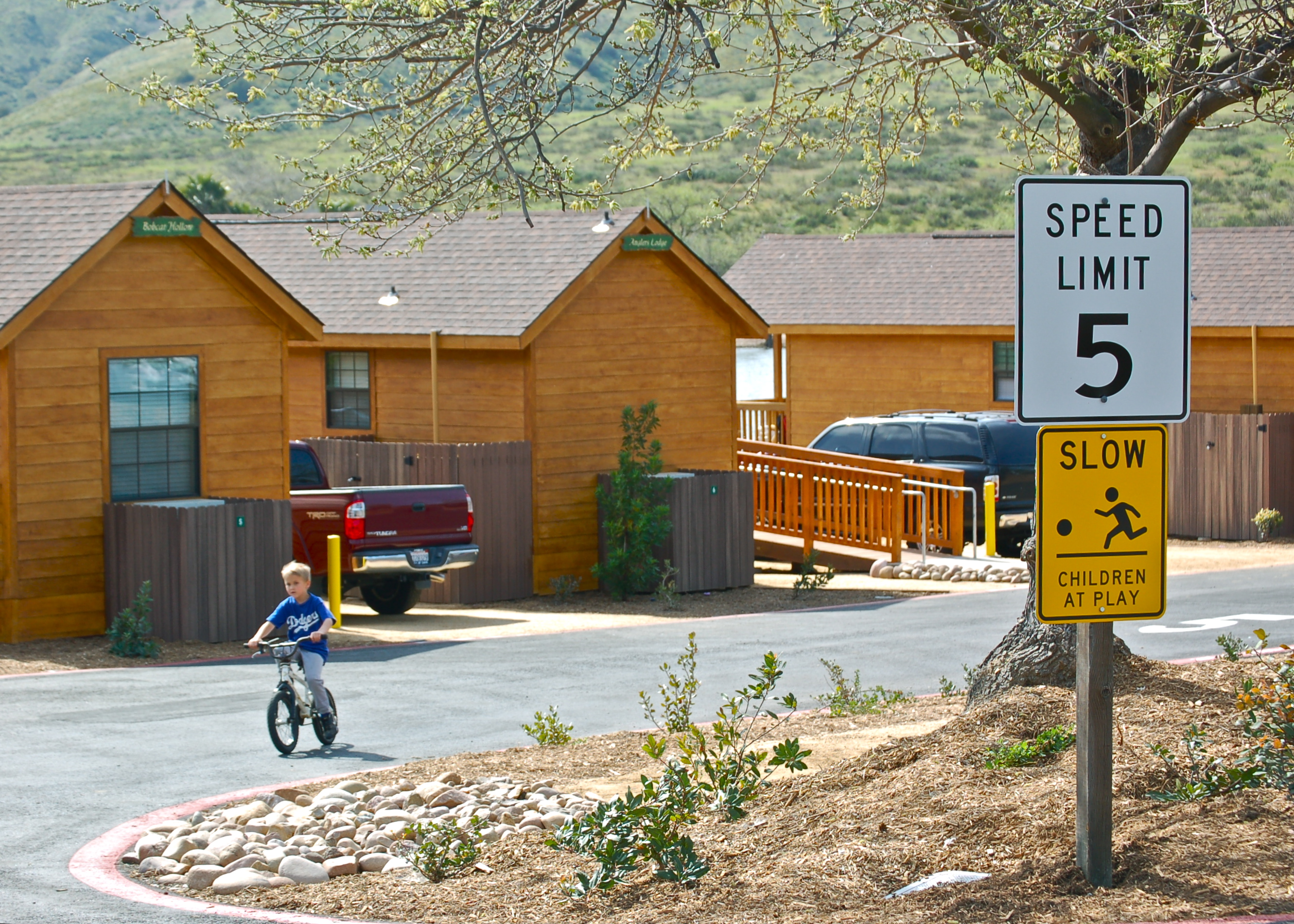 biking behind cabins