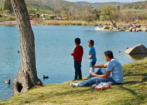 boys feeding ducks