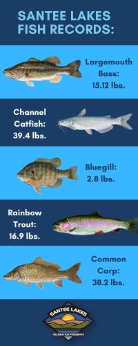 AsOf5.27.21santee lakes fish records